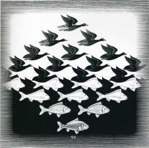 bird-and-fish-pattern-a-optical-illusion-m-c-escher-art-wallpaper-20140711204941-53c04de5d5fa1